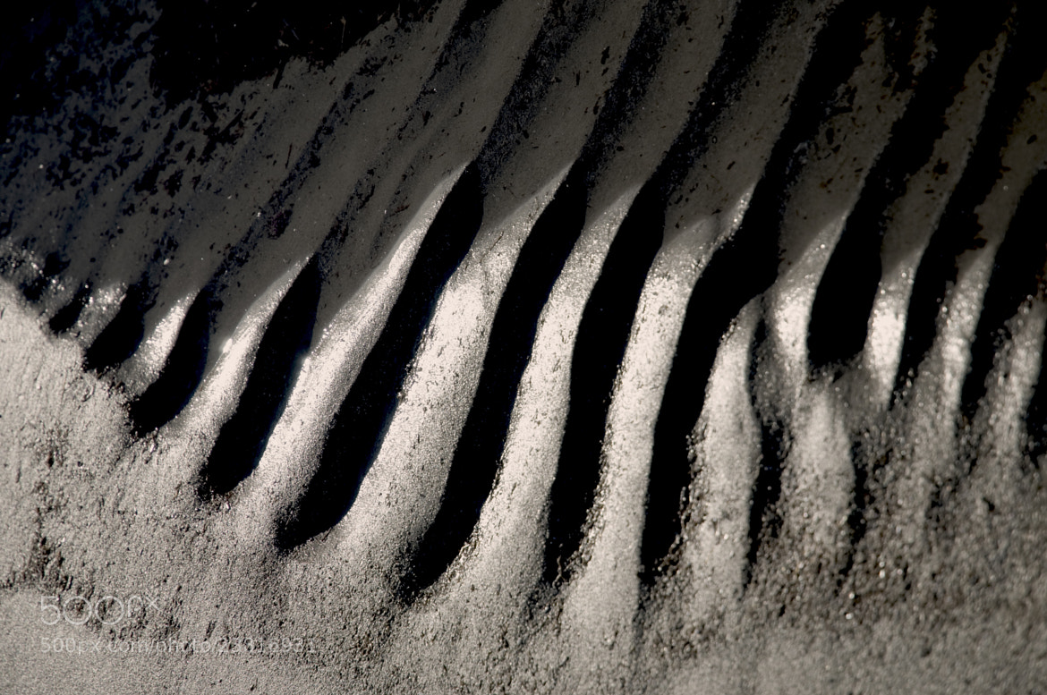 Photograph Sand  by Maryse Algoet on 500px