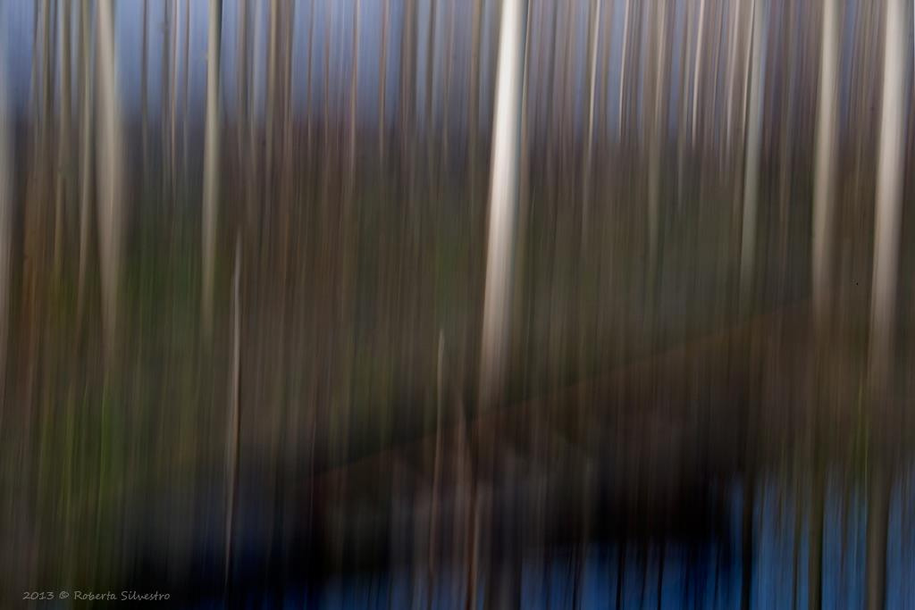 Photograph Abstract  life by Roberta Silvestro on 500px