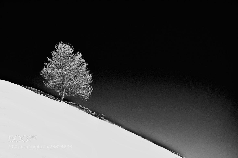 Photograph simplicity by Silviu Bondari on 500px