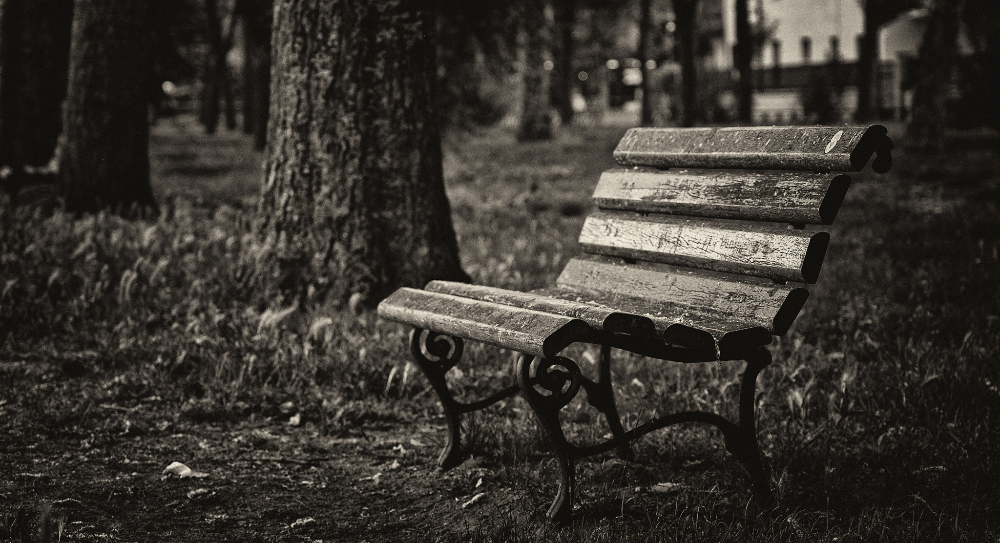 Photograph No one will see us by Antonio  longobardi on 500px