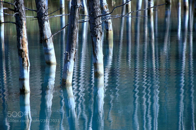 Photograph Blue Lake by yume . on 500px