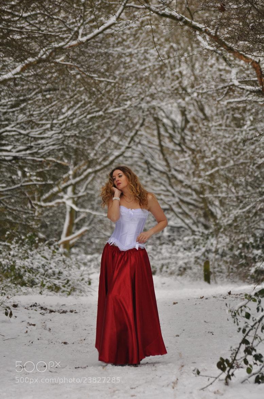 Photograph Snow Stroll by Karen Jones on 500px