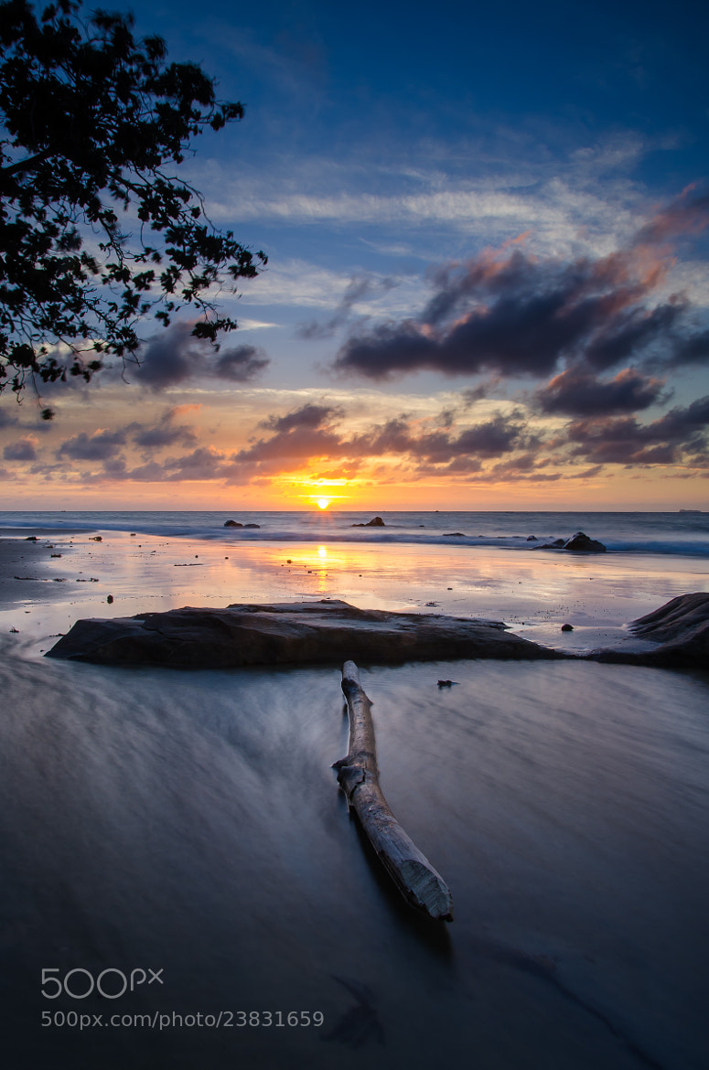 Photograph the lonely wooden by Erwin Winn on 500px