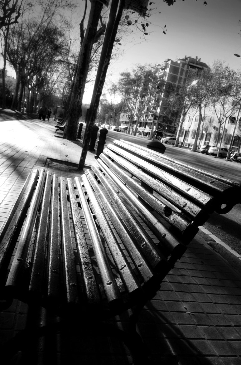 Photograph No time to sit by Anne Costello on 500px