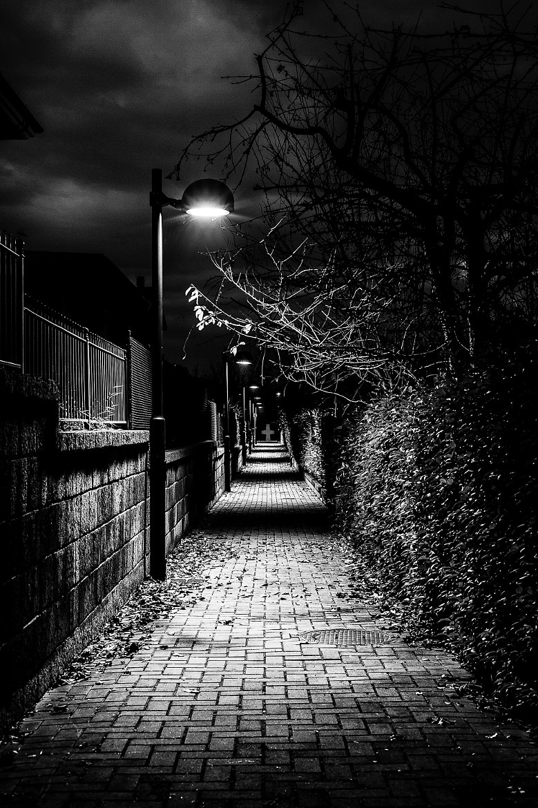 Photograph Path of fear by Antonio Cutrona on 500px