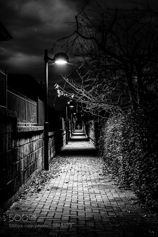 Photograph Path of fear by Antonio Cutrona on 500px