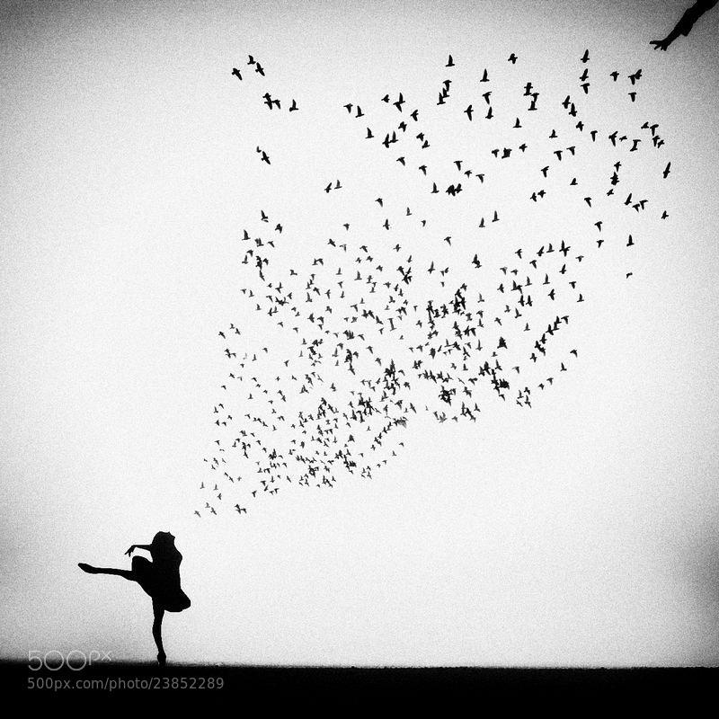 Photograph Untitled by Emese-durcka Laki on 500px