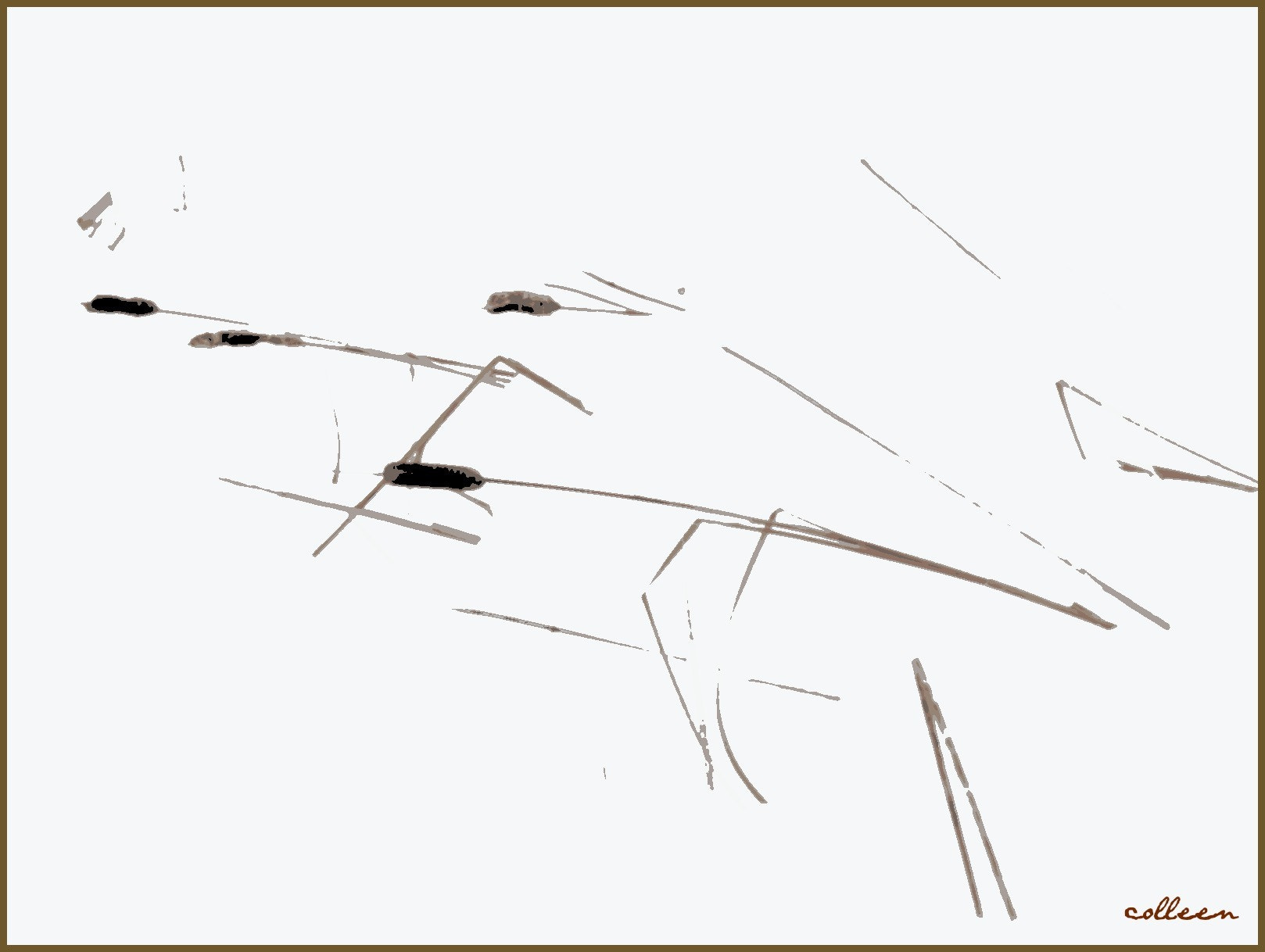 Photograph Fallen Rushes! by colleen thurgood on 500px