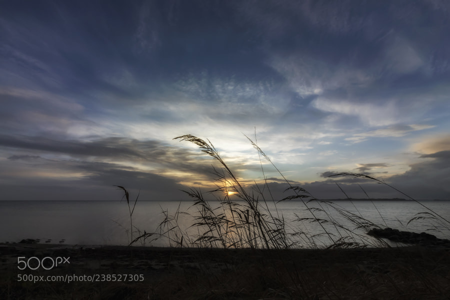 Light cloudy morning