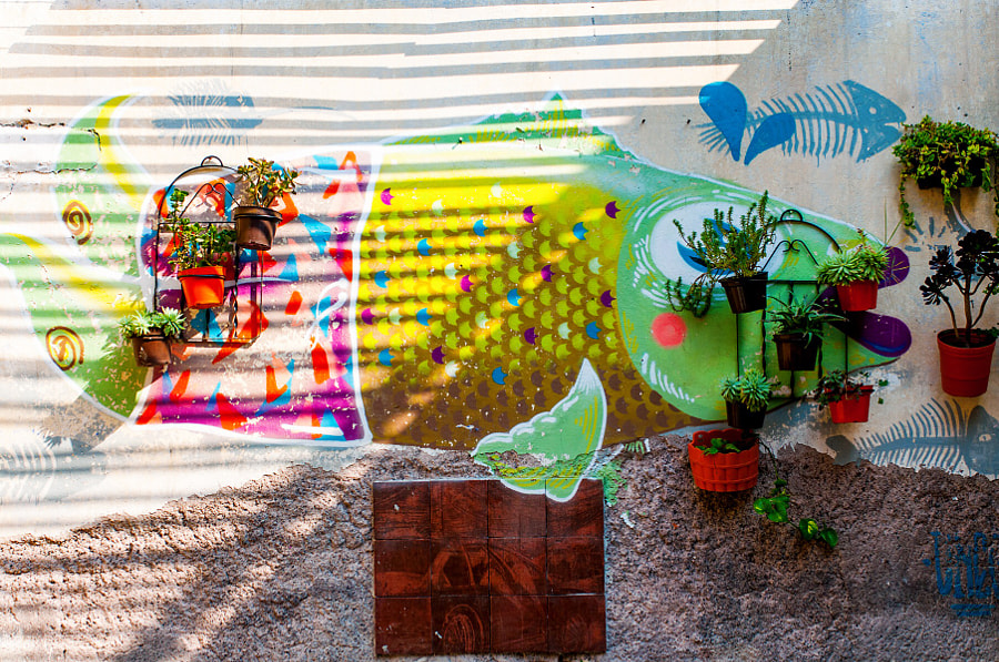 Airbnb Rasta House México City by Cattiva Kat on 500px.com