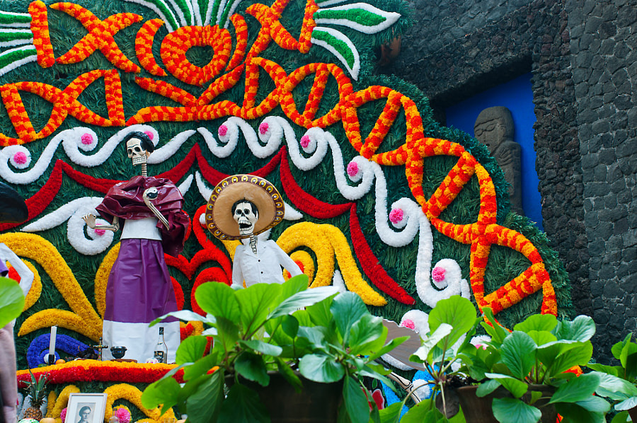 Dia de Muertos in México City- Frida Kahlo House by Cattiva Kat on 500px.com