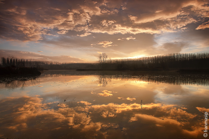 Photograph New day by Fran Masip on 500px