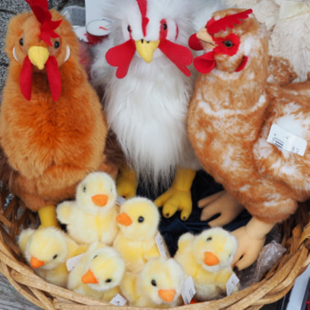 The chicken and the egg... all in one basket :P