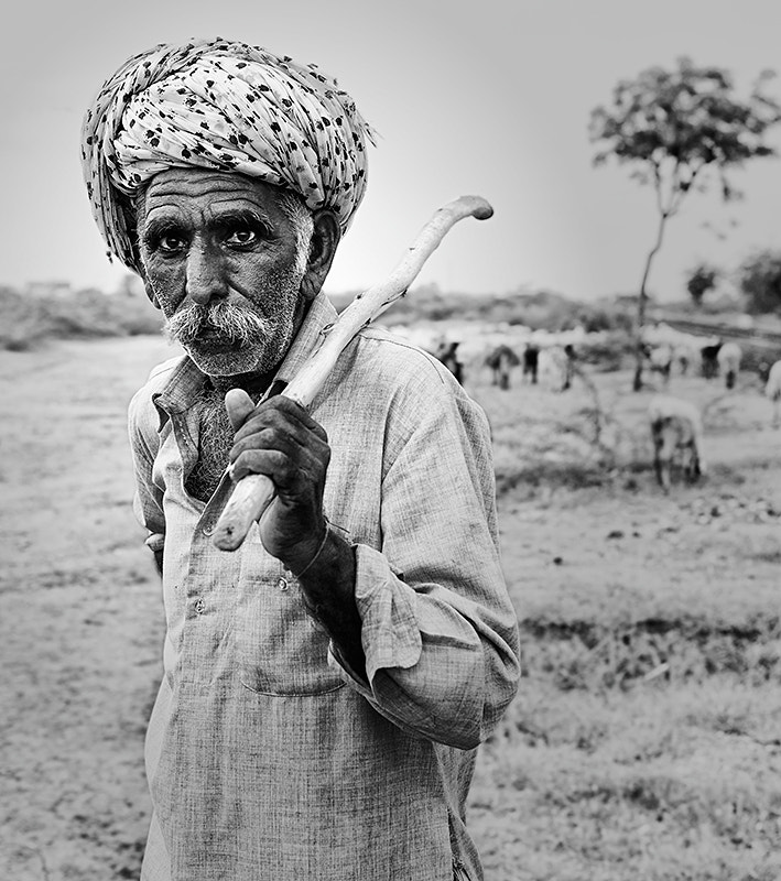 Photograph The Shepherd (India) by Sonia Blanco on 500px
