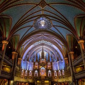 Basilique Notre Dame Montreal #3
