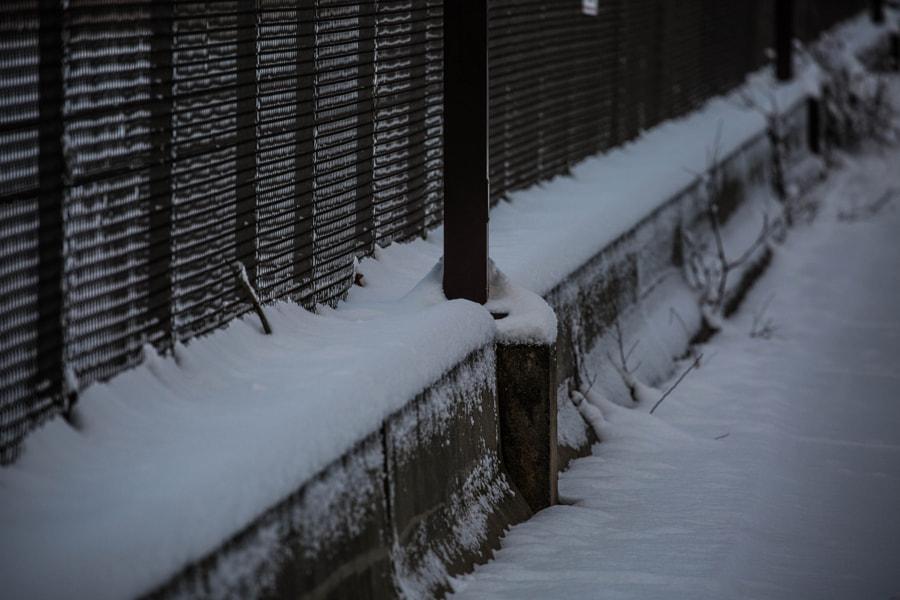 Fresh Snow by Mark Becwar on 500px.com