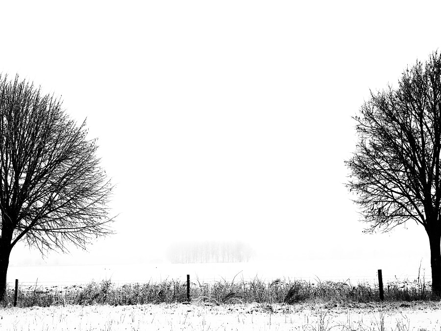 GabrielHemery whiteout by The Tree Photographer on 500px.com