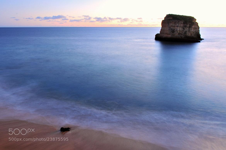 Photograph Alone on the beach by José Eusébio on 500px