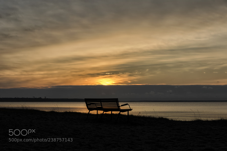 The bench with the view