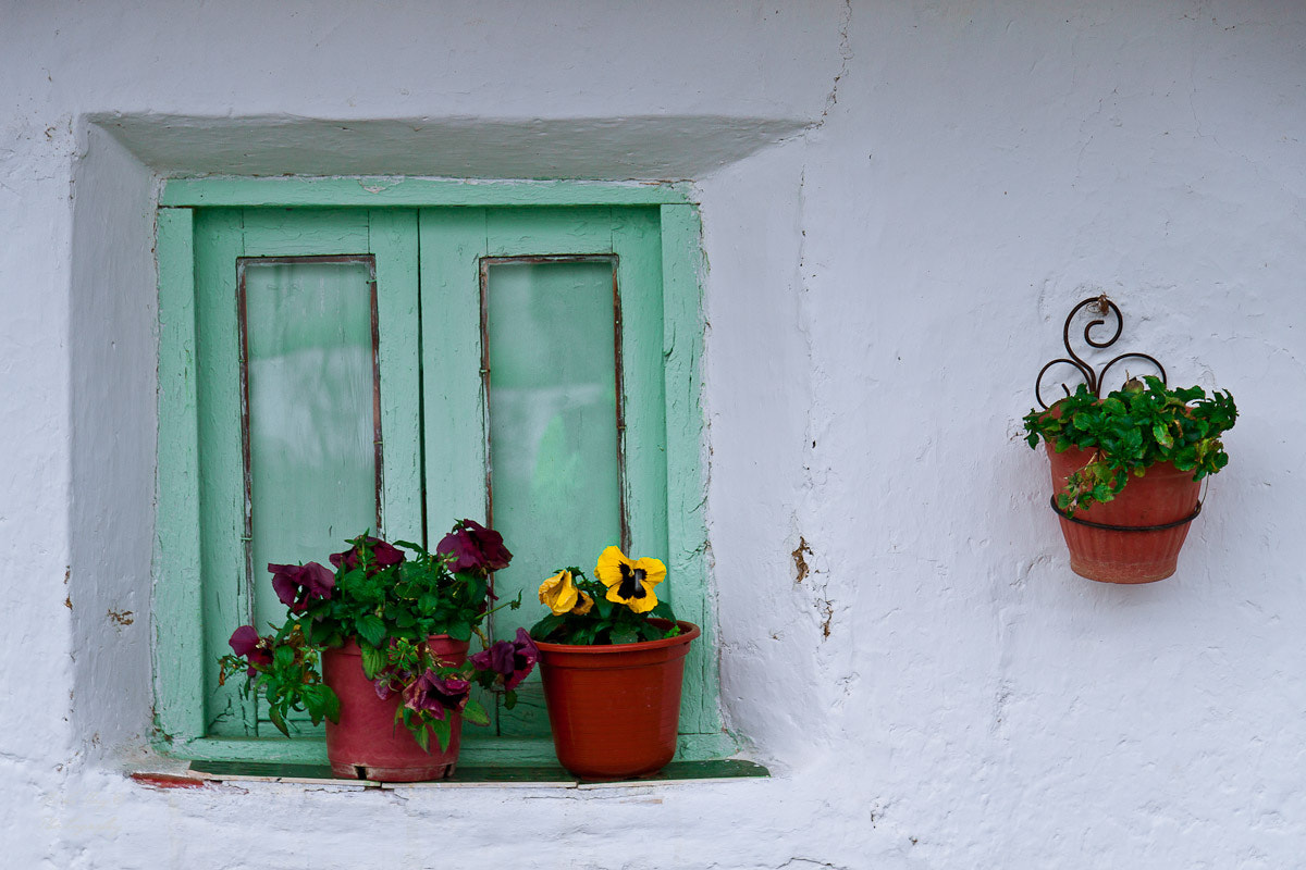Photograph Thoughts in the window by Mike May on 500px