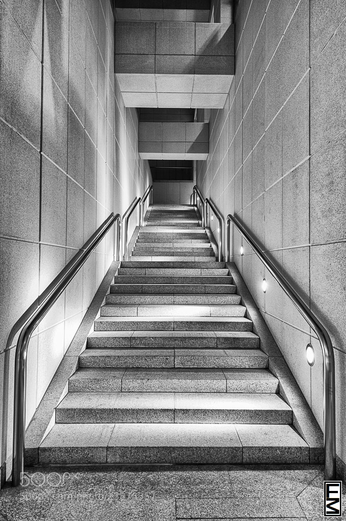 Photograph The Stairs by Eduardo Martin on 500px
