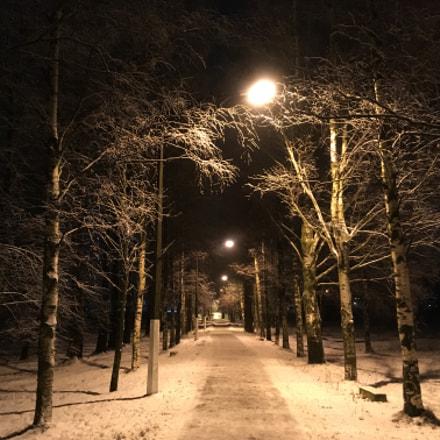 Зима/winter