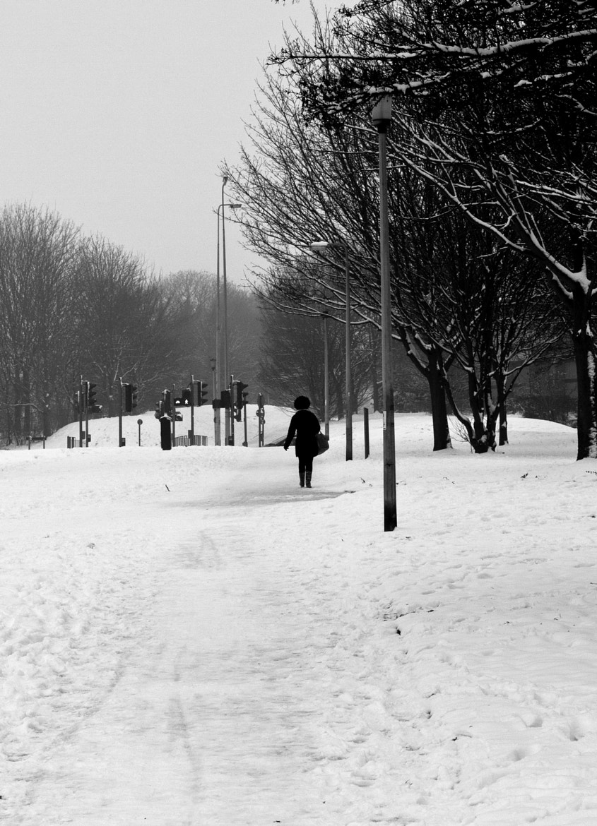 Photograph Walking in the Elements  by Peter  Holmes on 500px