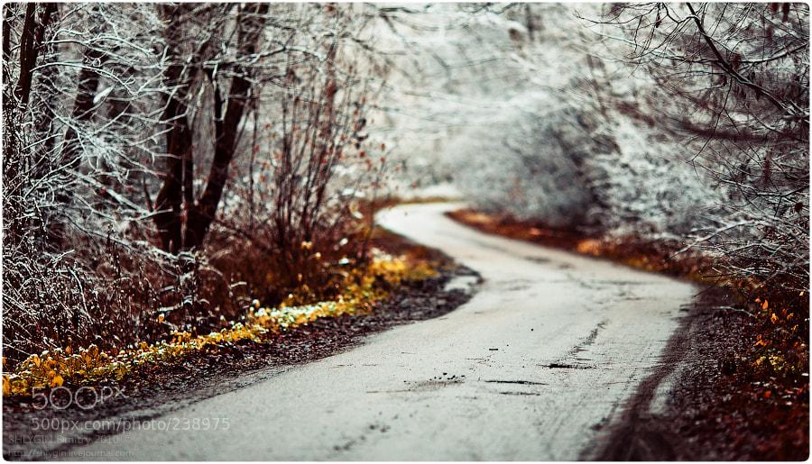 Photograph \(^_^)/ by Dmitry Shlygin on 500px