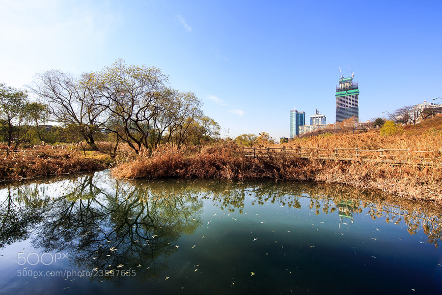 Photograph Harmony by HanRiver Jang on 500px