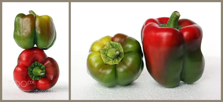 Photograph Peppers by Julia S on 500px