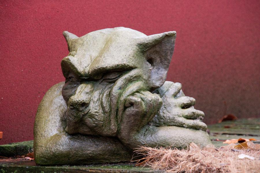 Boudeur (Pouty) de Christine Druesne sur 500px.com