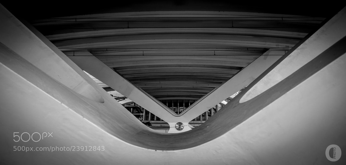 Photograph Guillemins station - Liège by Olivier Beart on 500px
