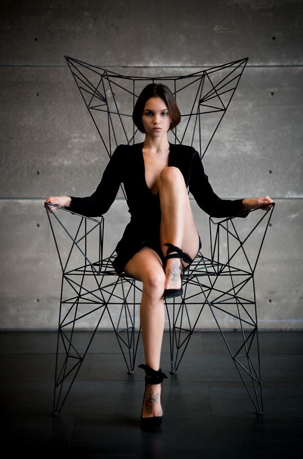 the throne by Vladimir Nikolaev