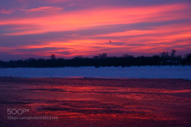 Photograph Winter morning... by Grigory Nesvetaev on 500px