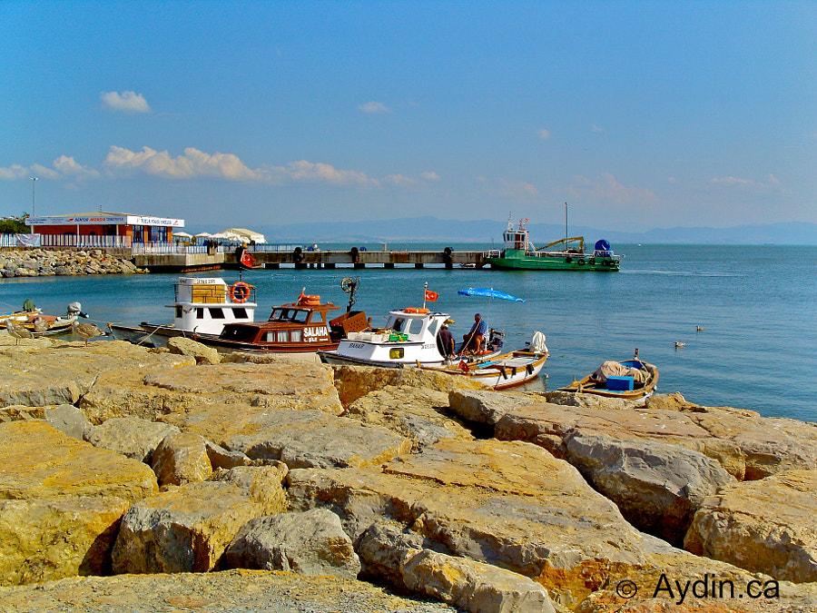Boats in Tuzla