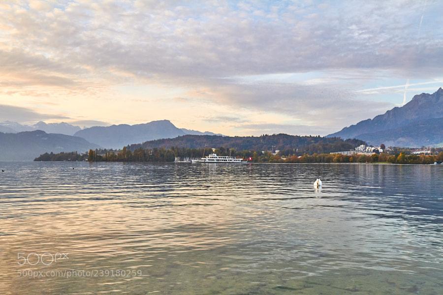 Lake Lucerne VII