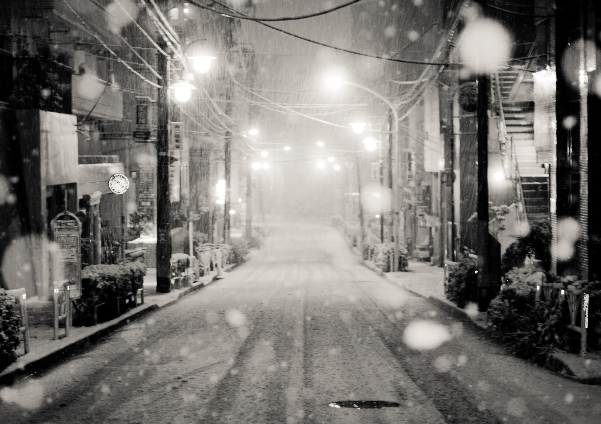 Photograph Snow dance in Tokyo; 東京に舞う by Yusuke Kitamura on 500px