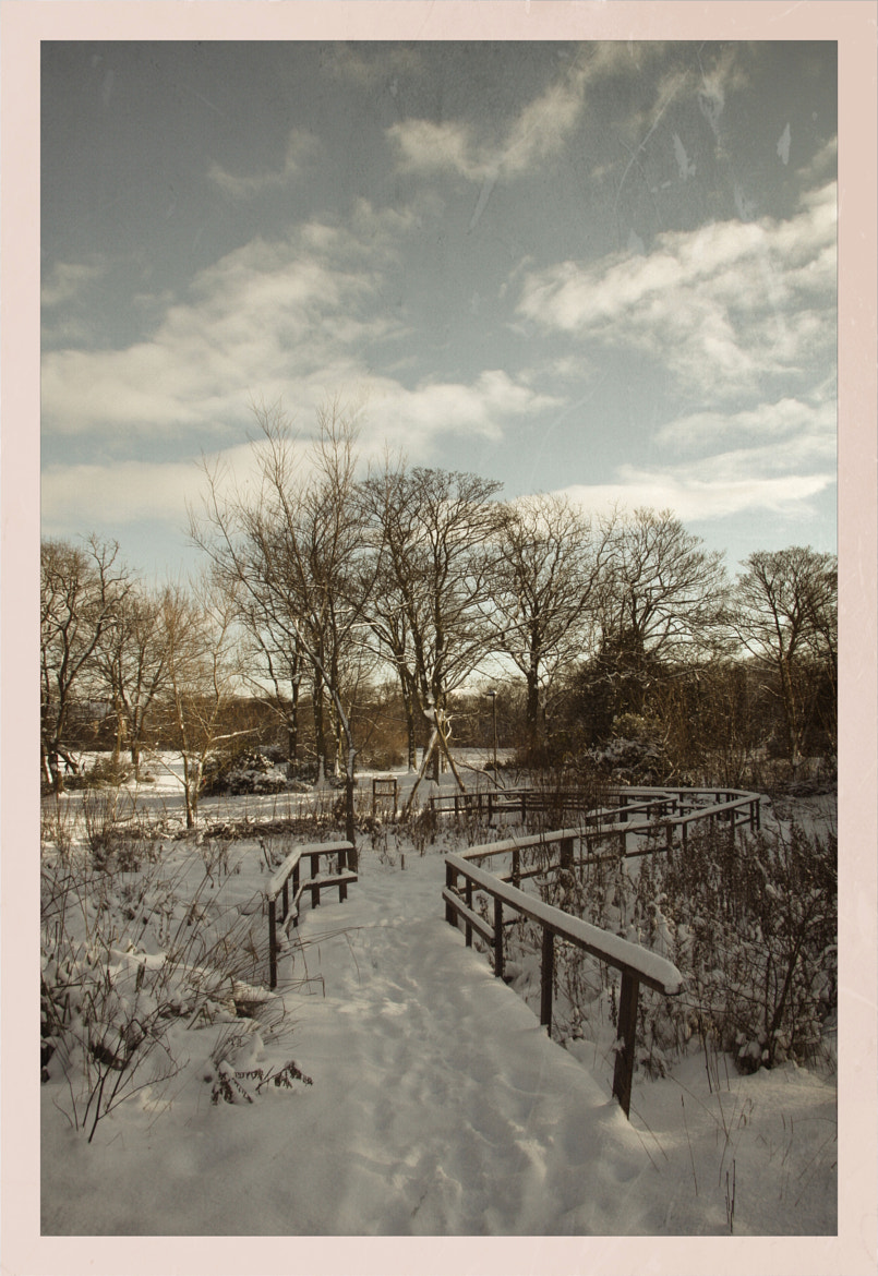 Photograph Winter Scene by Robert Armstrong on 500px