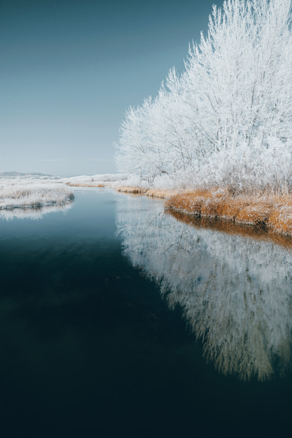 silver creek winter by Sam Brockway on 500px.com