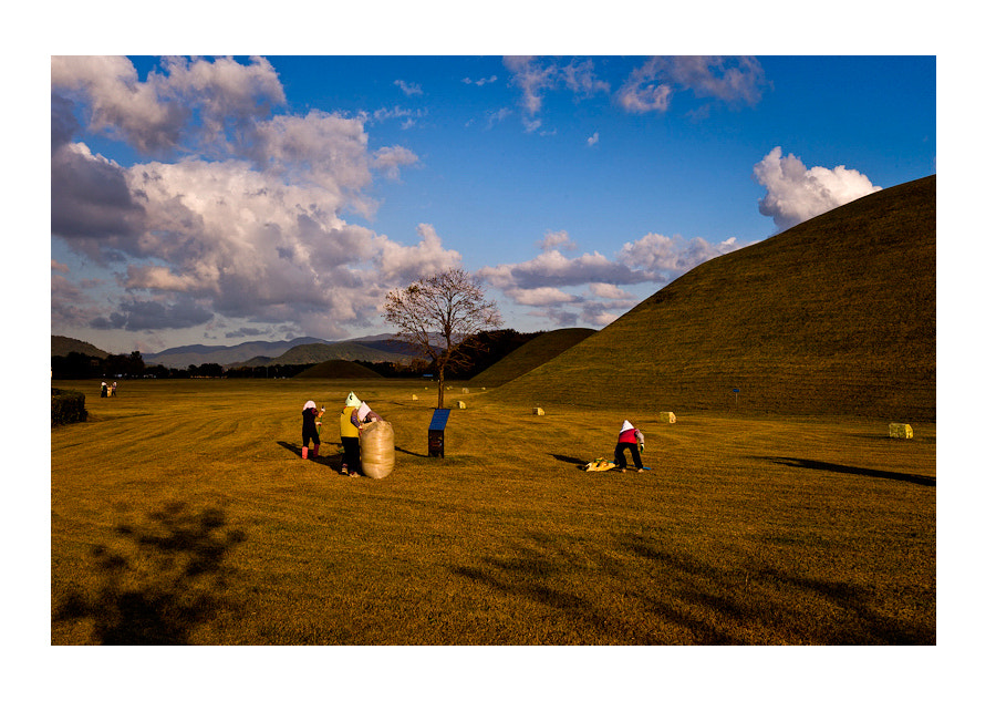 Photograph work-cut the grass by Jang In-Hwan on 500px
