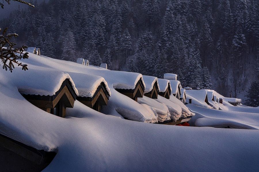 The Snow Country, автор — yunping ren на 500px.com