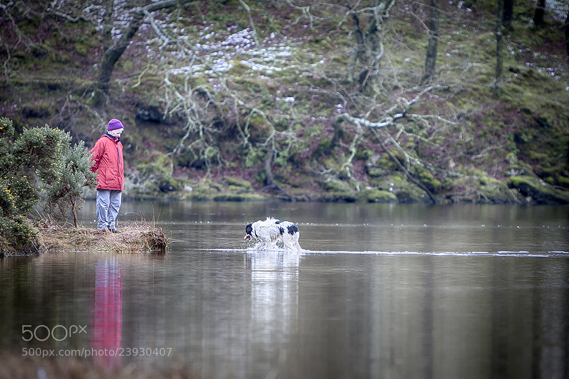 Photograph One Man and His Dog by Eimhear Collins on 500px