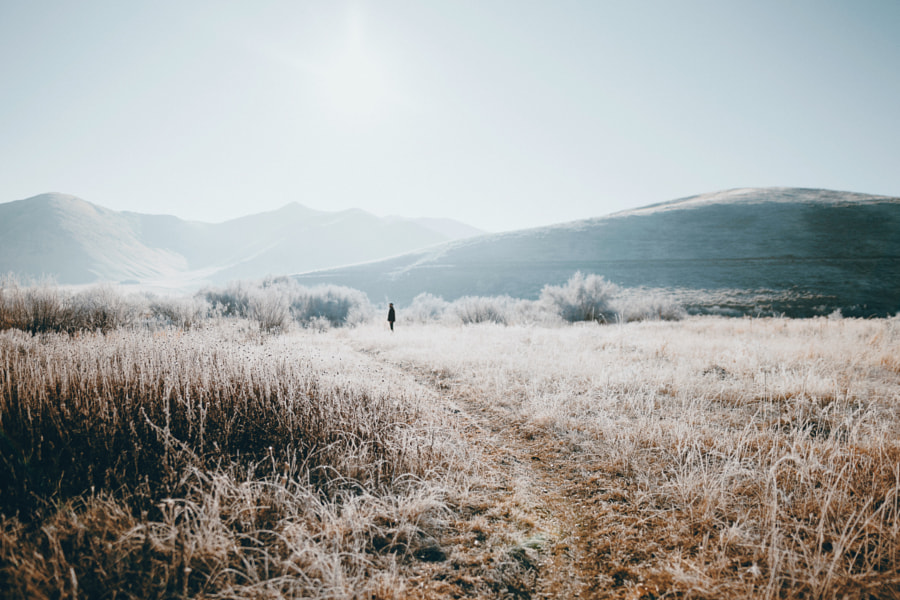 frosty morning by Sam Brockway on 500px.com