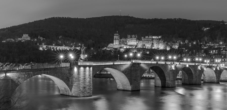 Heidelberg Castle at Night by Manfred Münzl on 500px.com