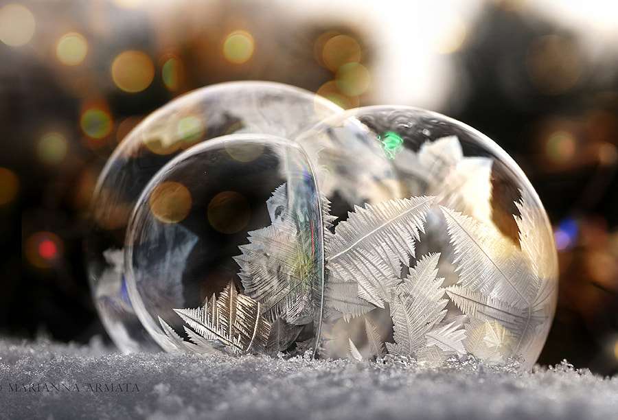 frozen bubbles