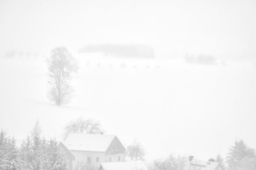 winter von dirk derbaum auf 500px.com