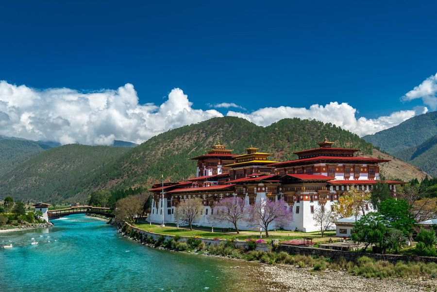 Punakha Dzong by Pavel Aberle on 500px.com