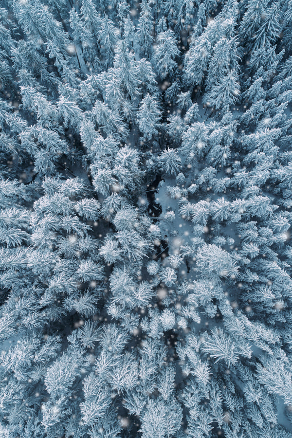 This is why I love winter by Nick Verbelchuk on 500px.com