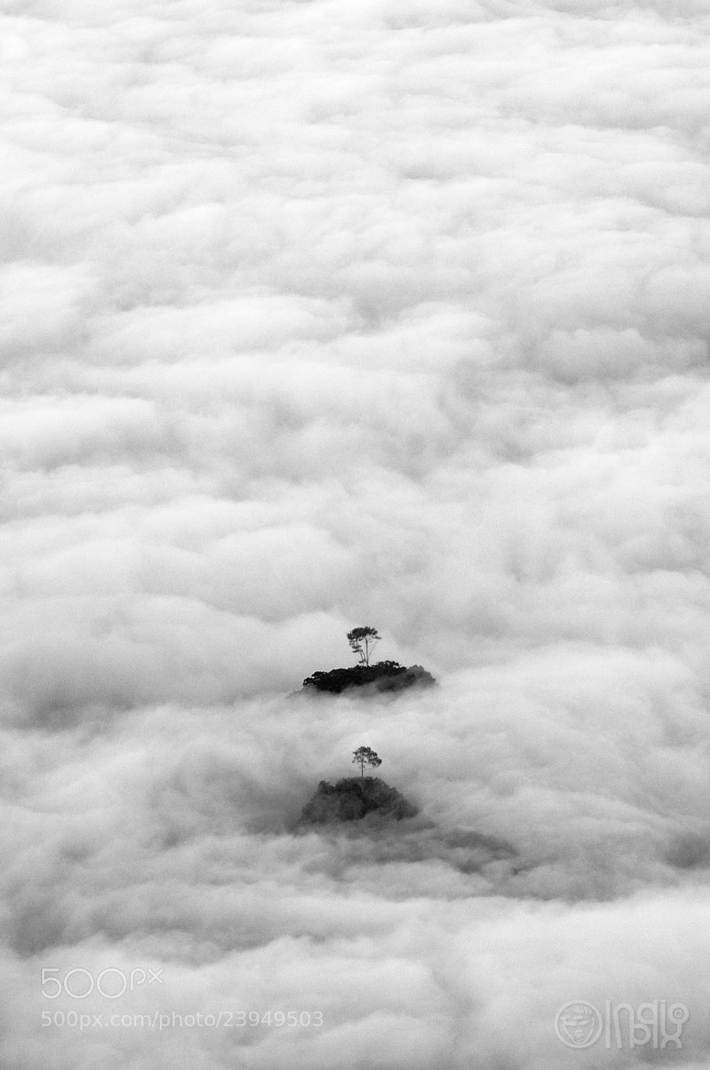 Photograph Twins by indiopix  on 500px