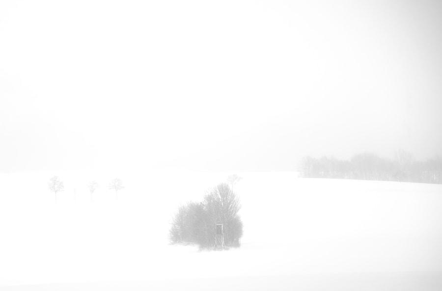 white von dirk derbaum auf 500px.com